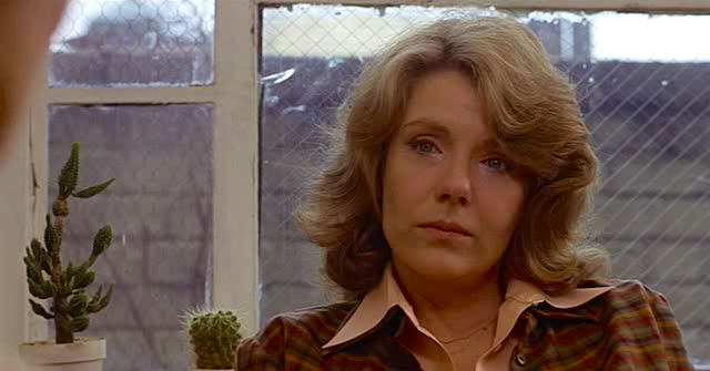 Listening and Thinking Jill Clayburgh An Unmarried Woman Paul Mazursky, 1978 Cinematography | Arthur J. Ornitz
