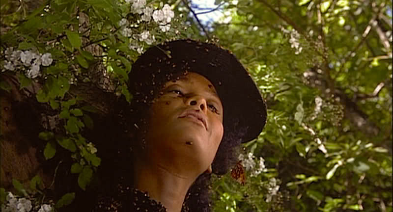 Grief, Sadness, Rage, Guilt, Pain and Human Horror Personified.  Thandie Newton as Beloved Jonathan Demme, 1998 Cinematography | Tak Fujimoto