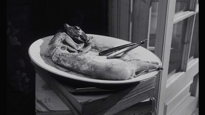 Sister's uncooked rabbit does not seem to bother Carol, but something about the bunny's head is of particular interest. The first use of the straight razor. Catherine Deneuve REPULSION Roman Polanski, 1965 Cinematography | Gilbert Taylor