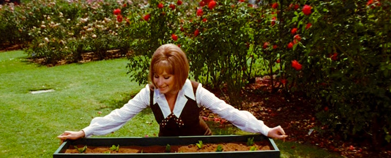 Surrounded by color and lush orchestrations, Daisy lip syncs her heart out to make the flowers grow to great proportions, speed and even more glaring colors! Come on up, yee buds! Barbra Streisand On A Clear Day You Can See Forever Vincente Minnelli, 1970 Cinematography | Harry Stradling Sr.