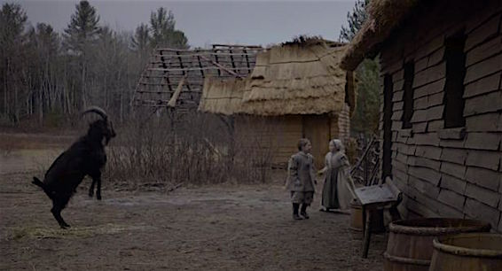 An odd plaything for an odd pair of twins... Meet Black Phillip. The Witch Robert Eggers, 2016 Cinematography | Jarin Blaschke