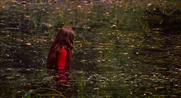 """I thought you were supposed to be the love generation."" The Last House on the Left Wes Craven, 1972 Cinematography 