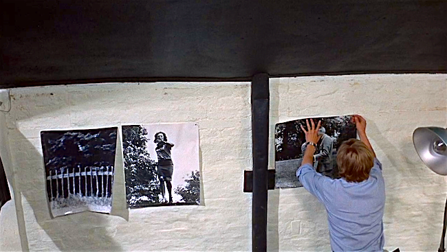 For the first time in the film, David Hemmings shows some passion in his pursuit of understanding. Michelangelo Antonioni, 1966 Cinematography | Carlo Di Palma