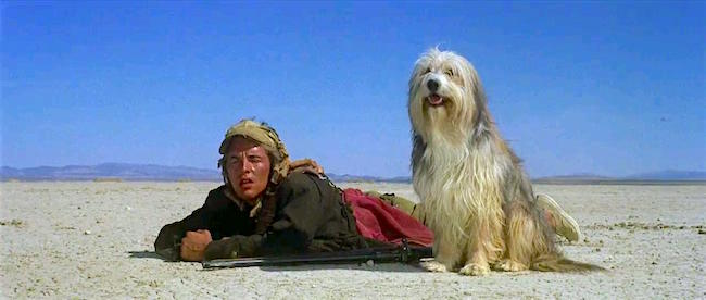 """Well, I'd certainly say she had marvelous judgment, Albert, if not particularly good taste."" Don Johnson and his talking dog A Boy and His Dog L.Q. Jones, 1975 Cinematography 