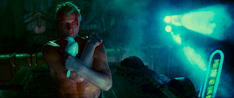Neo-Noir / Neon-Noir meets The Beautiful / The Dangerous Rutger Hauer Blade Runner Ridley Scott, 1982 Cinematography | Jordan Cronenweth